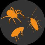 Eco Pest Control Pest Button