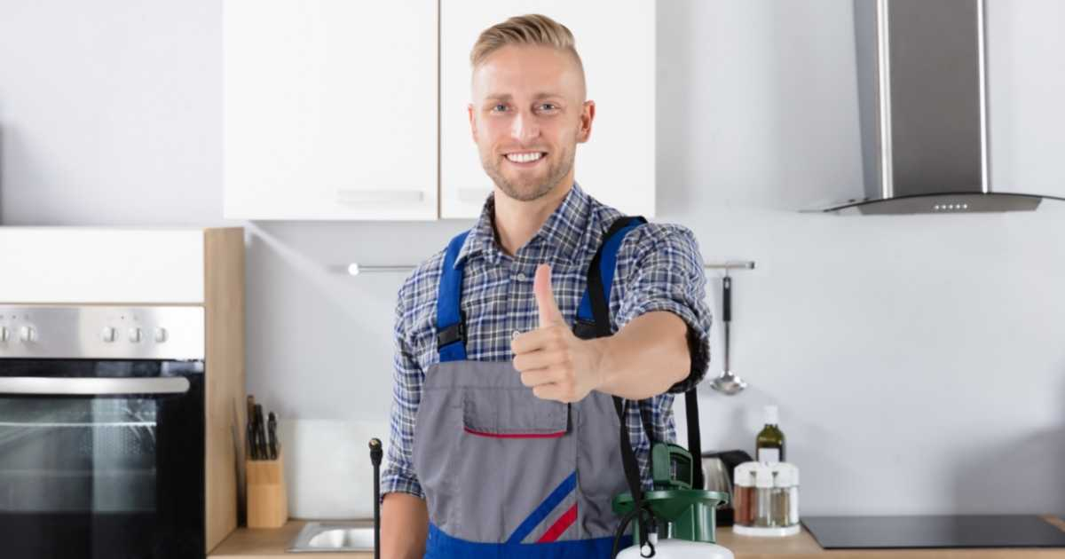cairns pest control frequency